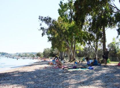 παραλία δασσιάς